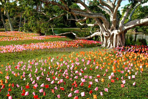 fairchild-tropical-botanic-garden-miami